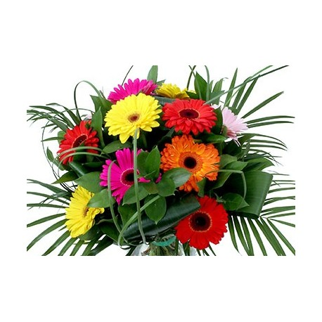 Greek Gerberas bouquet mix