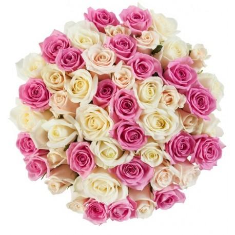51 τριαντάφυλλα σε ρόζ - λευκό
