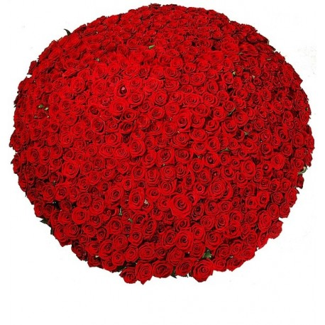 Flower basket 501 red roses