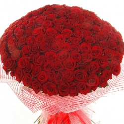 Bouquet 201 red roses