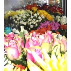 Patras Flowershops