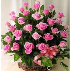 Flowerbasket pink Roses - Florist Patras city