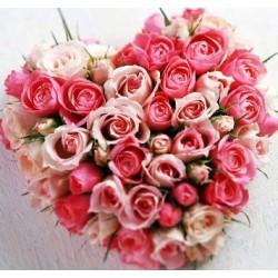 Καρδιά με Τριαντάφυλλα  - Τιμη ανθοπωλειου Πατρας