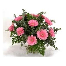 Μπουκετο με ροζ ζερμπερες - Τιμη ανθοπωλειου Πατρας