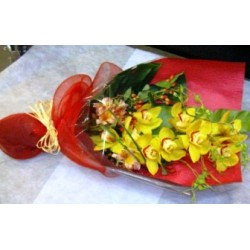 Cymbidium Orchid - Florist Patras city