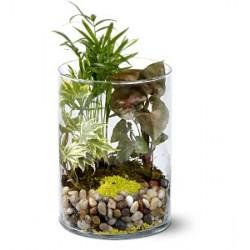 Μικρός Κήπος σε γυαλα- Τιμη ανθοπωλειου Πατρας