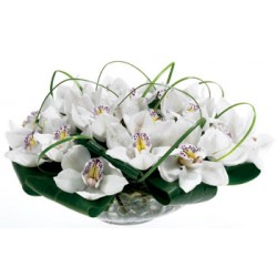 Vase with orchids - Delivery Patras city