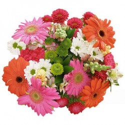 Mix flowers Zerbera and Chrysanthemum