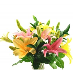 Greek bouquet Mix Lilies
