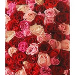 Beautiful heart of 151 roses