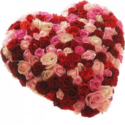 Beautiful heart of 151 roses