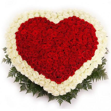 Ηeart of 301 red & white roses
