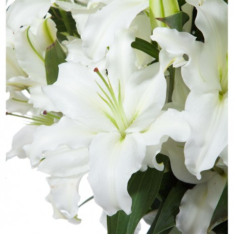 15 White oriental in bouquet