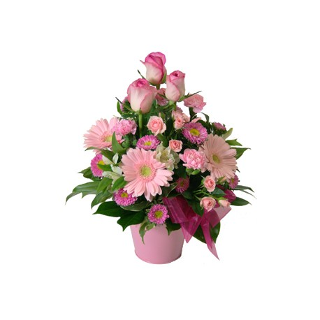 Flowers pink in caspo