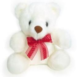 Μικρό αρκουδάκι - Πατρα