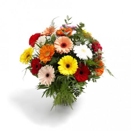 Gerbera gift bouquet